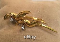 Bird Brooch Doves 18K Gold and Old Mine Diamonds. 34 tcw Art Nouveau c. 1900