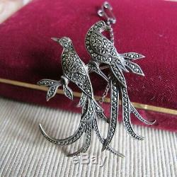 Fabulous Vintage Marcasite Lega No. 514 Birds of Paradise Sterling Silver Brooch