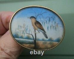 Victorian 15ct Gold Sweetheart / Memorial Brooch Photo Locket Hand Painted Bird