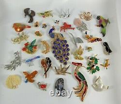 Vintage Now Brooches Pins Brooch Lot Enamel Rhinestone Animals Birds Estate #2